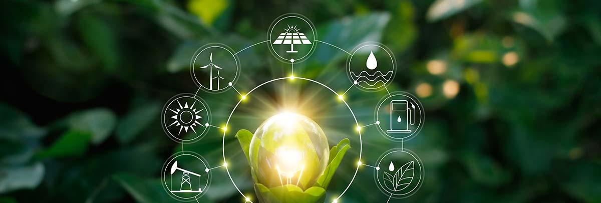 Die grüne Versicherung – Nachhaltigkeit in der Versicherungsbranche